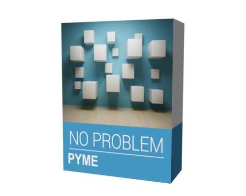 SOFTWARE NO PROBLEM PYME PROFESIONAL (A+B+C)
