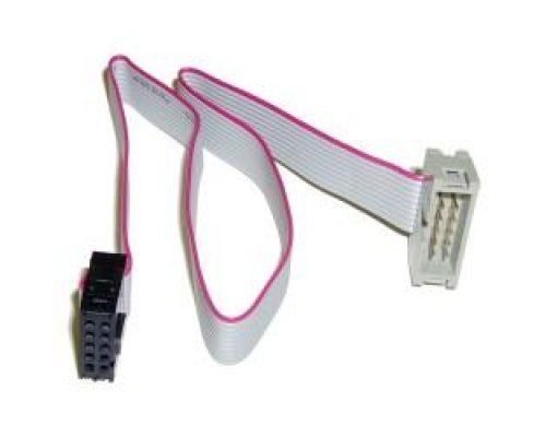CABLE INTERNO IDC10 USB/SERIE 30cm MACHO/HEMBRA